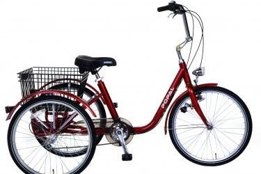 popal 24 inch-volwassen-driewieler-rood